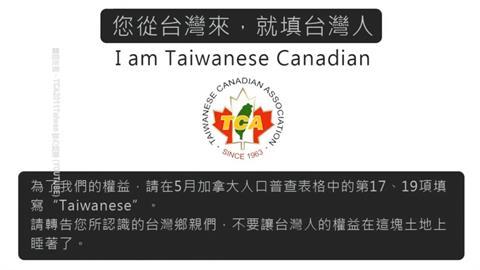 反中高漲! 加拿大人口普查 台僑喊填Taiwanese