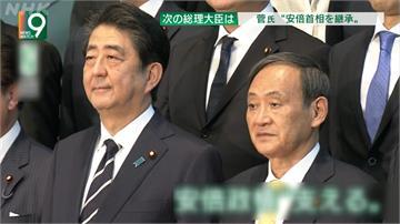 全球/人和、資歷無敵手 菅義偉將成下一任日本首相?
