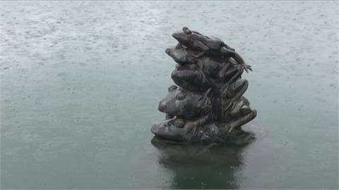 日月潭水情回春了!九蛙開心吃水 露出4隻半