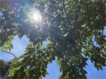 16縣市高溫「台北38度熱炸」!林嘉愷:中南部「這天起」下大雨