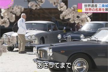 櫻花下的老爺車展! 「世界遺產」二條城湧入大批車迷