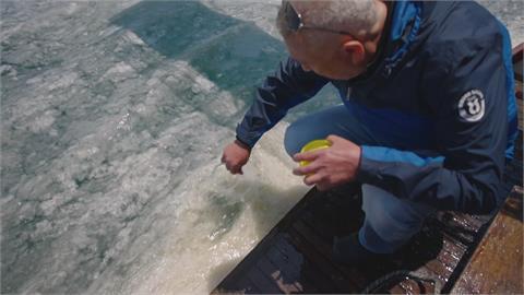 土耳其海域環境遭污染 海洋生物大量窒息死亡