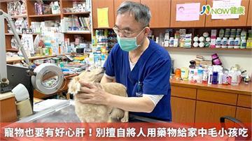 寵物也要有好心肝! 別擅自將人用藥物給家中毛小孩吃