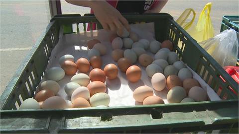 水煮蛋好難剝?她分享「電鍋煮法」注意「這撇步」蛋殼一捏就碎