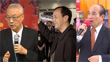 國民黨內總統初選 洪秀柱:支持全民調