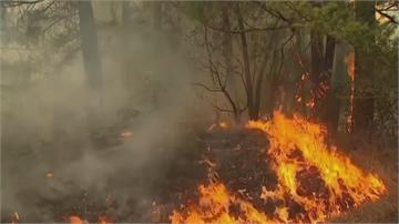 加州野火燒上千英畝 鳴笛撤離萬人斷電