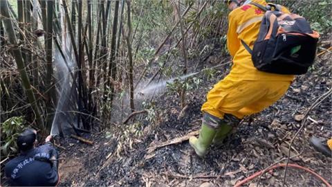 不滿被長期騷擾男放沖天炮趕獼猴 意外燒毀0.2公頃山坡