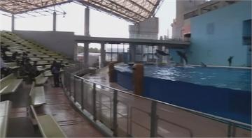 日水族館因疫情關閉 改在網路上播出表演
