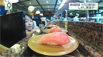 捕不到黑鮪魚!日本漁民陷入困境