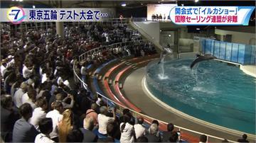 海豚秀迎奧運選手 日帆船協會挨轟虐待