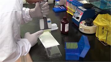 抗疫又傳捷報 新加坡發現5種抗體可中和病毒