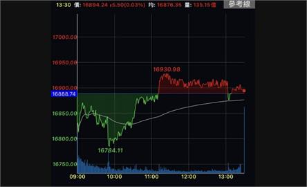 貨櫃三雄領航 台股翻紅收漲5點留110點下影線