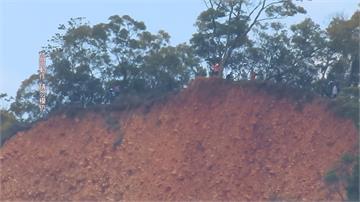 苗栗火炎山斷崖曾有警摔落 遊客玩命爬樹拍照