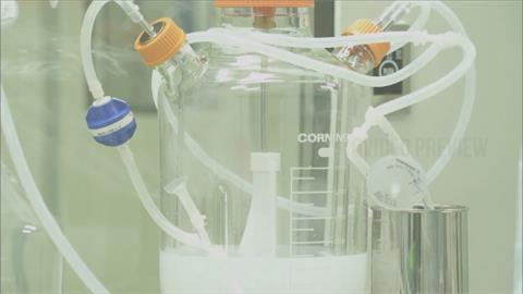 藍營瘋狂唱衰國產疫苗 專家:使用次蛋白技術 成份單純更安全