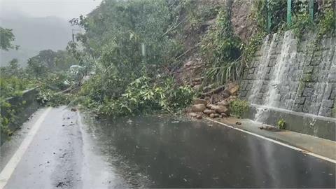 「烟花」環流釀災 行道樹遭吹倒砸中路過汽車