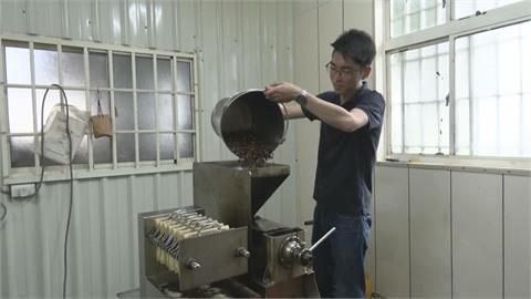 花蓮青農自產自銷苦茶油 連4年獲3項國際大獎