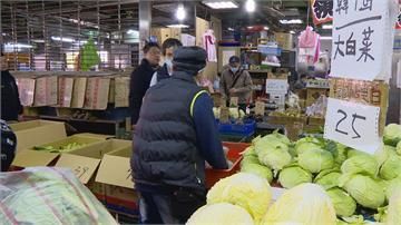 寒流來襲低溫菜凍傷菜價狂飆! 高麗菜、茼蒿漲4倍