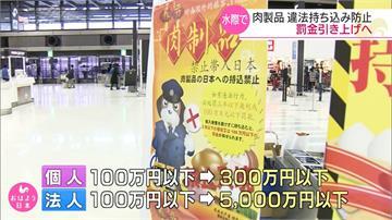 日本防非洲豬瘟 罰則提高為300萬日圓