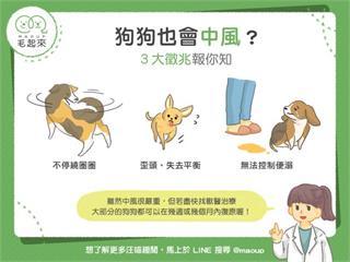 【狗貓健康】狗狗也會中風?3大徵兆報你知|寵物愛很大