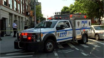 紐約南亞裔富豪慘遭分屍!現場無血跡 警方疑專業謀殺