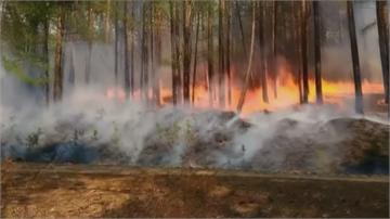 俄羅斯西伯利亞森林野火 燒毀逾46000公頃