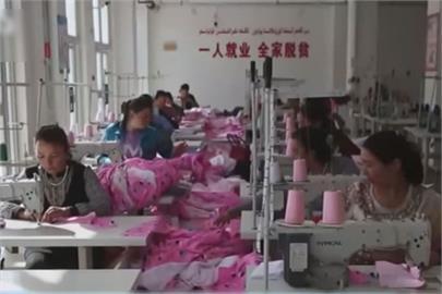 快新聞/新疆棉風暴延燒 新疆官方:沒有強制勞動「都是自己的意願」