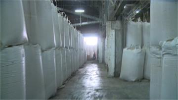 台東農民憂「稻米豐收」價崩!農業處:將依往年價格收購