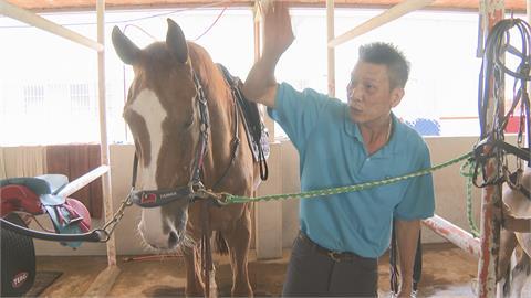 廟會牽馬遭馬臉甩傷 教練:大動作嚇到馬