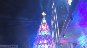 萬人見證!奇美博物館耶誕樹點燈「美翻」