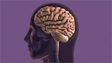 瑞典學者驗血測阿茲海默症 準確率98%