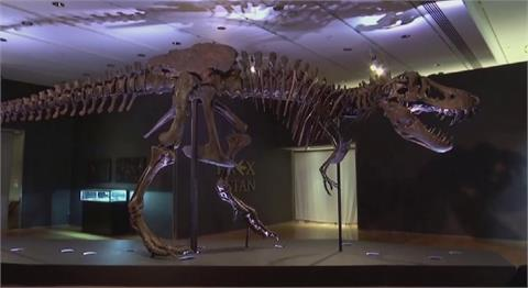 加州大學最新研究 地球上曾有25億隻暴龍