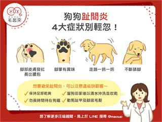【汪喵疾病保健】狗狗趾間炎,4大症狀別輕忽!