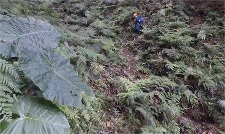 越野騎士登新竹高台山失聯6天 人找到了喊「肚子餓」