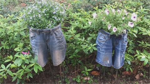 夜跑驚見草叢「躺屍」?大安森林公園藝術裝置嚇壞民眾