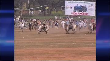 印度「鄉村奧運會」熱鬧非凡 今年因疫情取消
