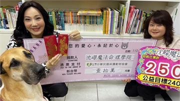 命理師沈嶸暖捐10萬助毛孩「置新居」 心疼浪浪嘆「愛護毛小孩等同愛護台灣」