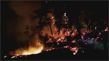 燒毀2/3個台灣「濃煙飄到溫哥華...」「美西野火惡化」川普將赴加州視察
