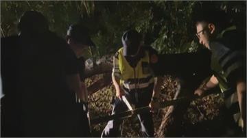 大樹檔路!尖石大雨土石崩  警察化身伐木工 鋸樹開路