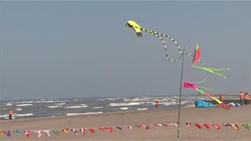 海岸線最美「風」情!台中大安濱海樂園風箏齊飛
