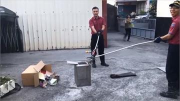 屏東「捕蜂抓蛇」委外執行  消防員鬆一口氣