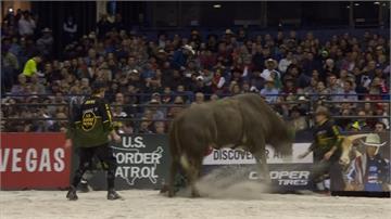 美國職業騎牛大賽芝加哥登場 牛仔慘摔遭野牛踩