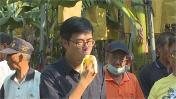 快新聞/陳其邁親踏旗山香蕉園 承諾穩定蕉價、打開外銷通路