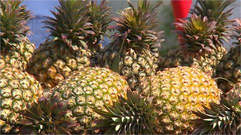 台灣鳳梨知名度暴漲 日本超市BELX水果營業額成長1.5倍