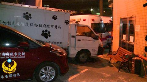 五股車禍波及消防救護車 幸無釀嚴重人員傷亡