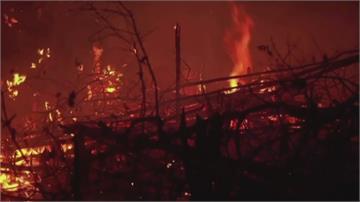 亞馬遜雨林野火續燒9個月 巴西總統聯合國開幕卸責引公憤