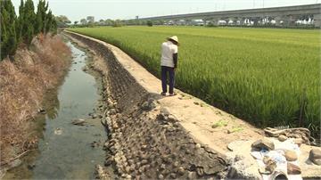 水田乾到龜裂 台南實施第一階段限水