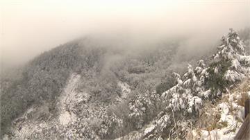 就是愛台灣味!太平山下雪湧大批遊客 泡麵3天賣1200碗