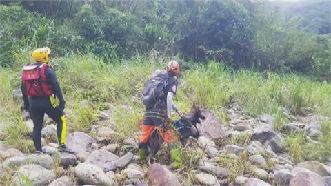 「讓我們帶妳回家」 搜救犬尋找虎豹潭失蹤8歲女童