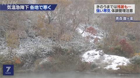 一片雪白! 北海道稚內市17號迎今年初雪