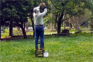 餵食引誘台灣藍鵲來拍攝 愛鳥人士撻伐